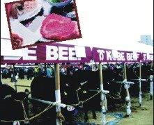 הבשר הכי רך בעולם: קובה (Kobe) ביף